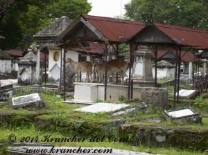 Peneleh Surabaya, goats