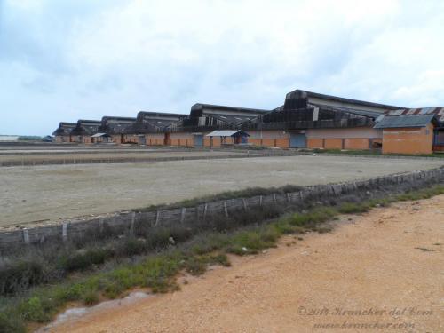 De nieuwe zoutpakhuizen
